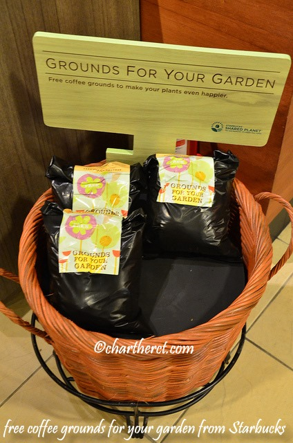 Free Coffee Grounds for Your Garden at Starbucks SM Davao Annex