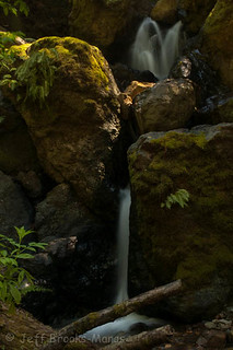 Mt. Tamalpais State Park - Steep Ravine Trail - Cascade
