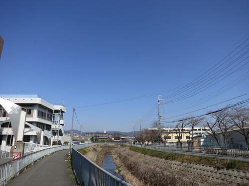 雲ひとつない、日本晴れ