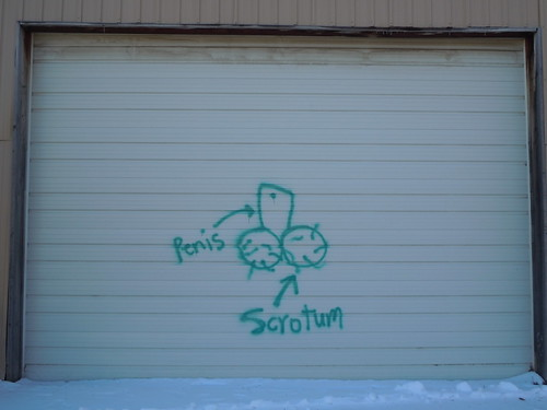 03-04-12 Chaska Building Center Demolition, Chaska, MN (Male Anatomy Graffiti)