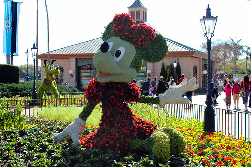 Wandering thru EPCOT checking out the Flower and Garden Festival