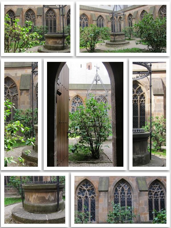 Paradise garden Olomouc