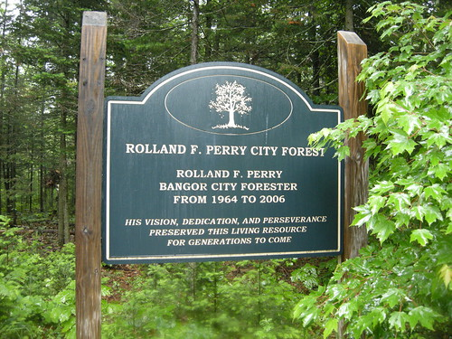 Phriday Photo – Rolland F. Perry City Forest