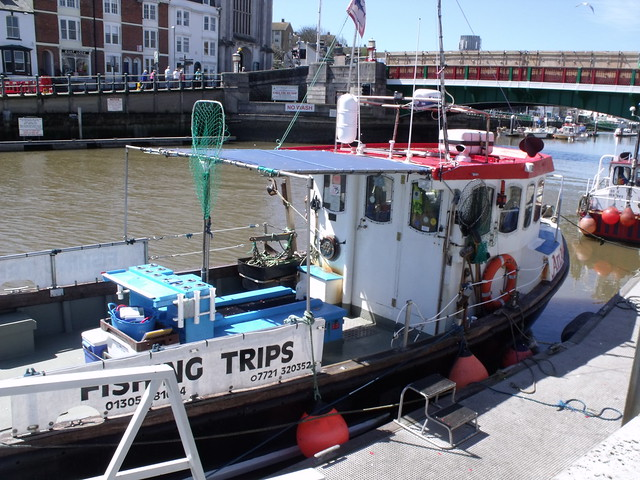 Photo for Fishing boat trips
