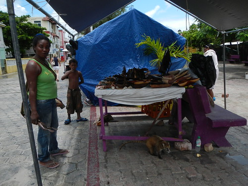 Coatimundi tied to table in San Pedro