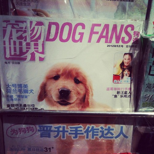 There is now a magazine for dog owners. Beijing, China