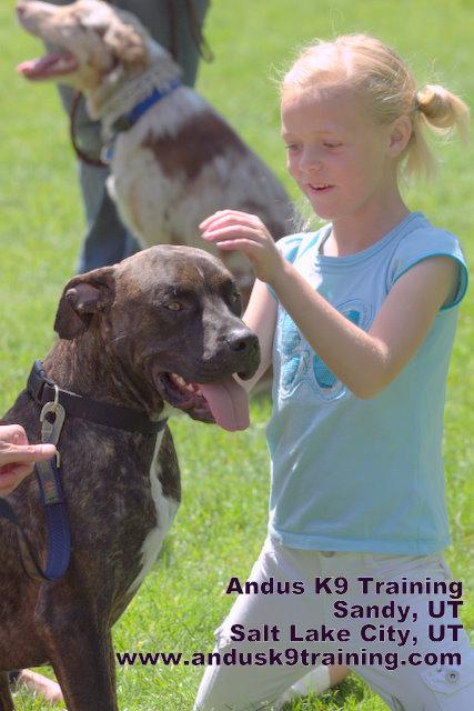Fosters Dog Training Antioch