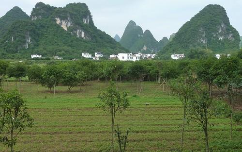 C-Guangxi-Yangshuo-Tour-Yulong (1)
