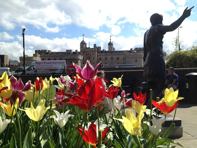 Tulips and statue of Trajan