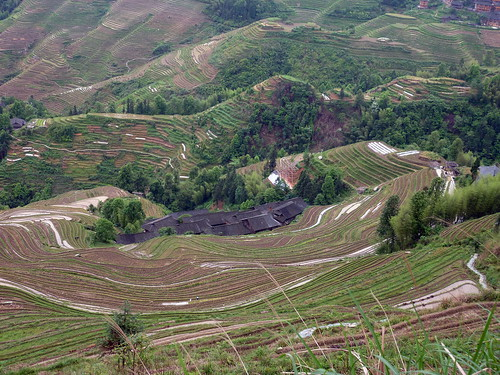 C-Guangxi-Dazhai-Descente (6)