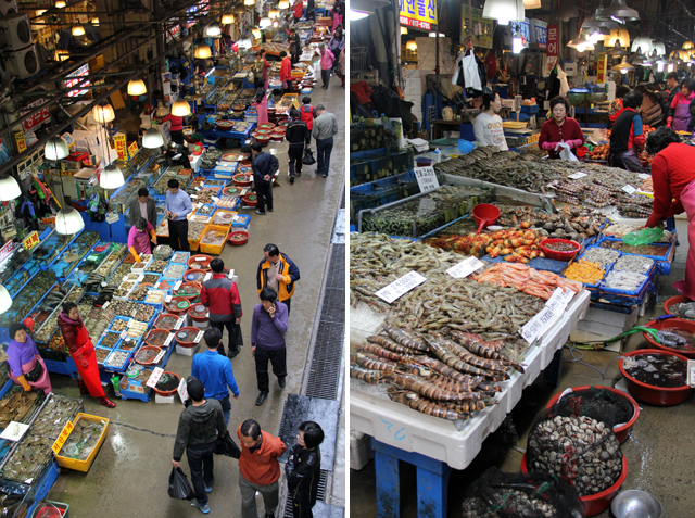 Noryangjin Fish Market - A Seafood Paradise!