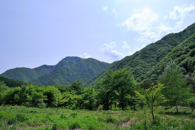 採集地の風景