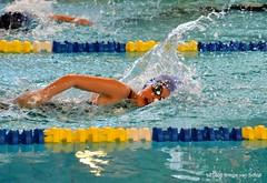 sanne zwemster