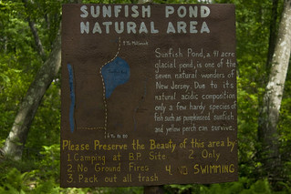 Appalachian Trail @ Sunfish Pond Columbia, NJ