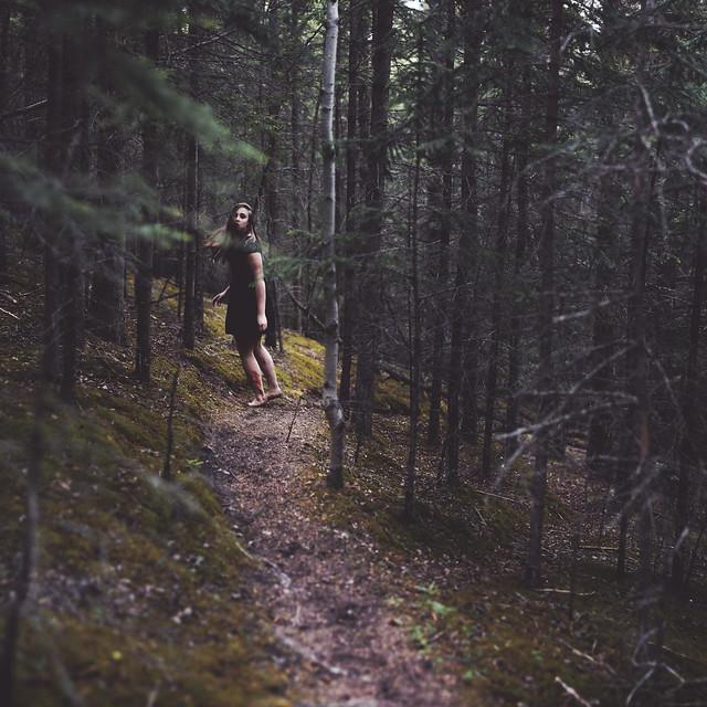 chase my fleeting heart