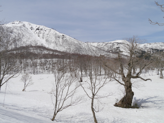 野伏ヶ岳 (68)