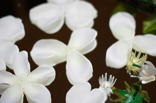 pull-flowers-apart