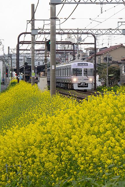 京王電鉄井の頭線1000系 1026F 出場試運転