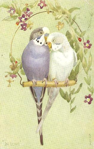 ParakeetsVintageVictorianPostcard