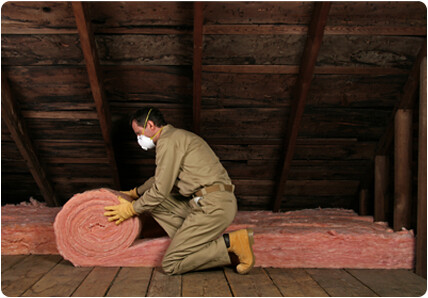 Attic Insulation by Integrity