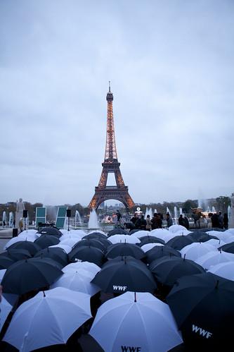 France_Paris_Volunteers with umbrella designing panda_copyright_cyril_lagel_00010