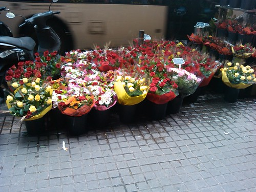 More Flowers Sant Jordi 2012 by simonharrisbcn