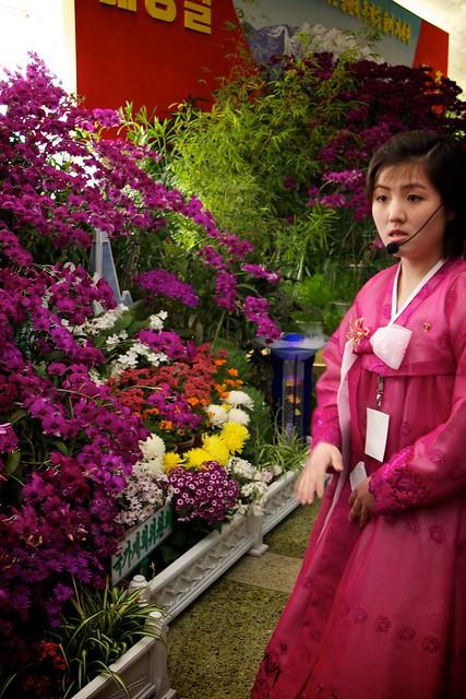 Pyongyang Flower Expo