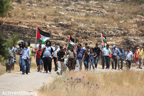 Demonstration against the occupation and the Wall, Bil'in, 08.06.2012