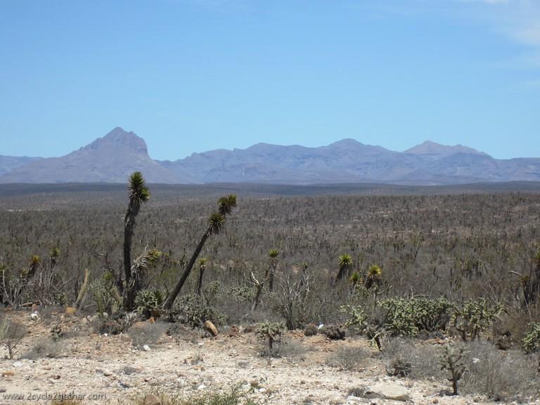 El Vizcaino Biosphere Reserve