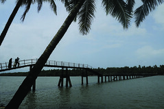Backwaters Photo Gallery