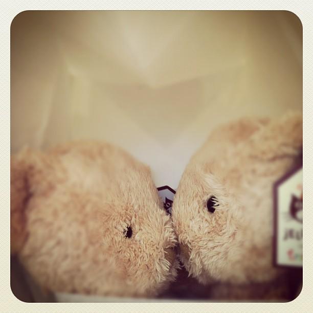 Bear kiss :)