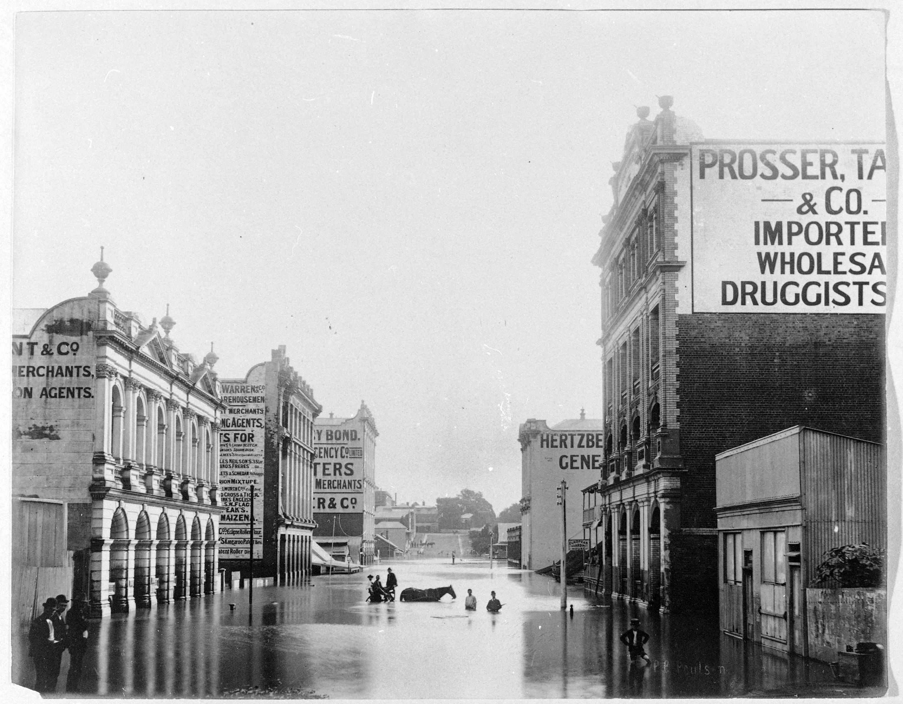 Flooded Brisbane streets 1893