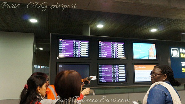 Paris - CDG Airport  (25)