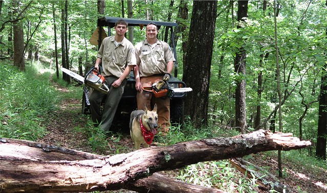 Shawnee the Shepherd poses with staff from Fairy Stone State Park who were already out clearing a trail after a storm the night before.