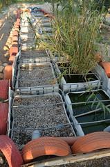 Eco-Center的中水回收系統