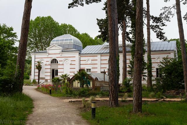 Jardin tropical de paris pavillon d 39 indochine flickr for Jardin indochine
