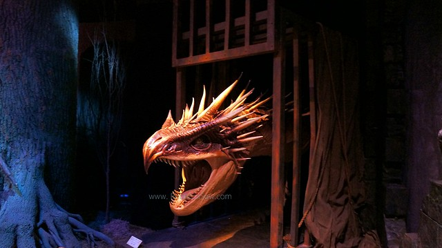 HARRY POTTER THE EXHIBITION - ArtScience Museum, Singapore-015