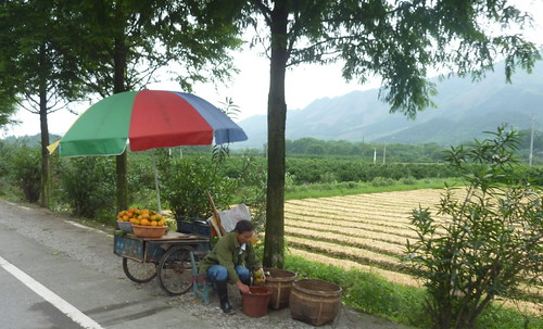 C-Guangxi-Route-Pingan-Guilin (26)