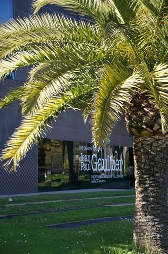 The de Young museum, framed by a palm tree