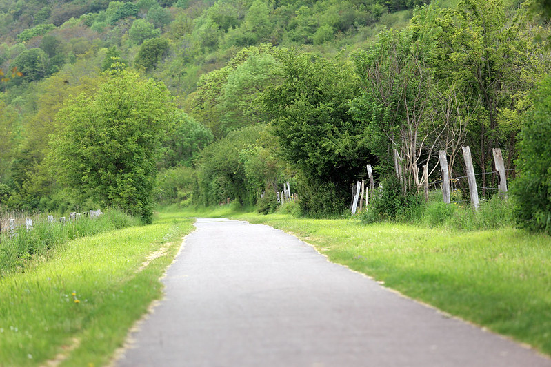 Path from Vernon to Giverny