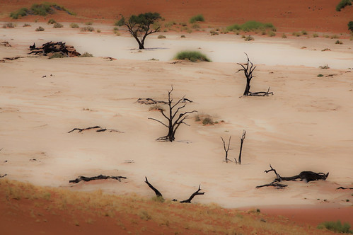 The colors of the Namib desert - at Deadvlei, Namibia
