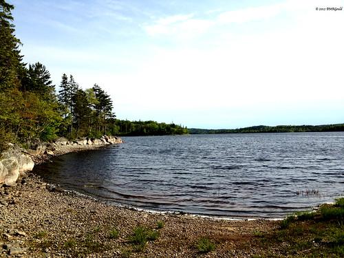 lake canada nature forest landscape novascotia lakecharlotte