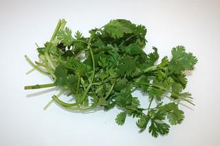 06 - Zutat Koriander / Ingredient coriander