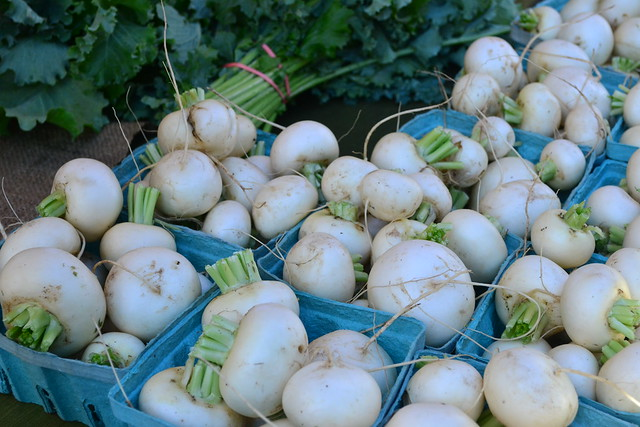 Japanese Turnips