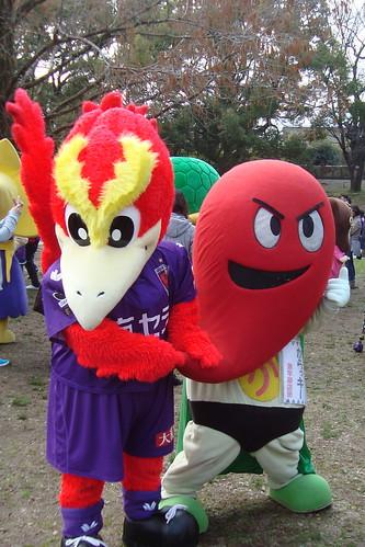 2014/03 J2第3節 京都vs栃木 #08