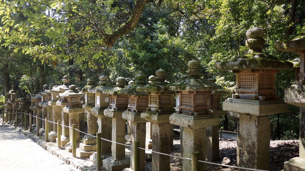 Kasuga Taisha Stone Lanterns