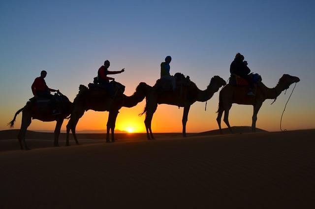 Excursión al desierto de Marruecos al atardecer en contraluz subidos a 4 dromedarios en el desierto de Erg Chebbi