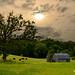 Millersburg Barn # 188 by Mike Linnihan