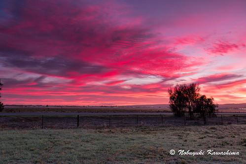 sunrise twilight mawsonlakes
