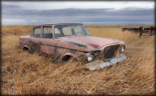 Studebaker on Grass